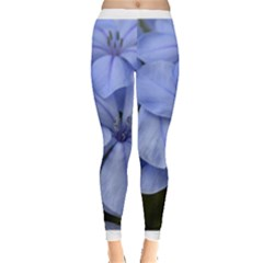 Bright Blue Flowers Women s Leggings