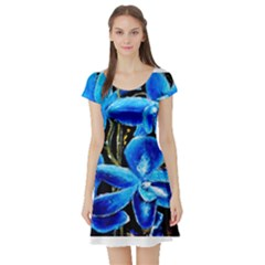 Bright Blue Abstract Flowers Short Sleeve Skater Dresses