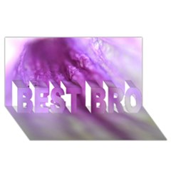 Purple Flower Pedal BEST BRO 3D Greeting Card (8x4)