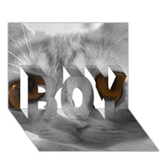 Funny Cat Boy 3d Greeting Card (7x5)