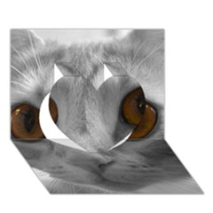 Funny Cat Heart 3D Greeting Card (7x5)