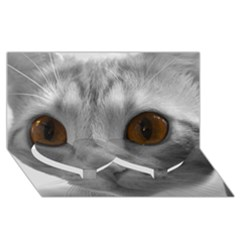 Funny Cat Twin Heart Bottom 3d Greeting Card (8x4)