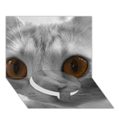 Funny Cat Circle Bottom 3d Greeting Card (7x5)
