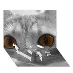 Funny Cat Love Bottom 3d Greeting Card (7x5)