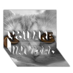 Funny Cat You Are Invited 3d Greeting Card (7x5)