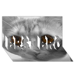 Funny Cat BEST BRO 3D Greeting Card (8x4)