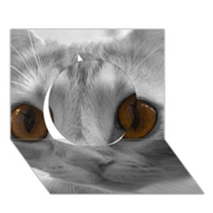 Funny Cat Circle 3D Greeting Card (7x5)