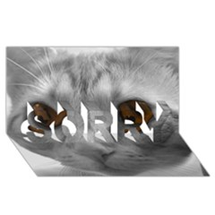 Funny Cat SORRY 3D Greeting Card (8x4)