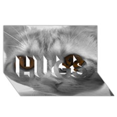Funny Cat HUGS 3D Greeting Card (8x4)