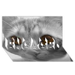 Funny Cat ENGAGED 3D Greeting Card (8x4)