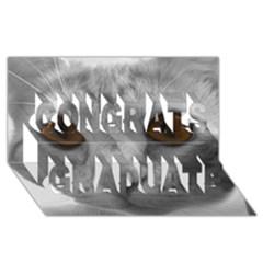 Funny Cat Congrats Graduate 3D Greeting Card (8x4)