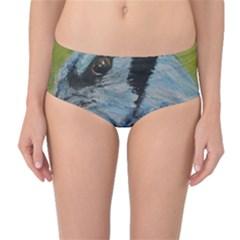 Blue Jay Mid Waist Bikini Bottoms