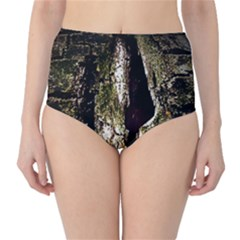 A Deeper Look High Waist Bikini Bottoms