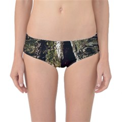 A Deeper Look Classic Bikini Bottoms