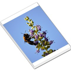 Bumble Bee 1 Large Memo Pads