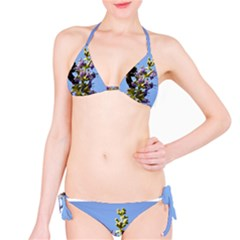 Bumble Bee 1 Bikini Set