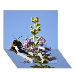 Bumble Bee 1 LOVE Bottom 3D Greeting Card (7x5)
