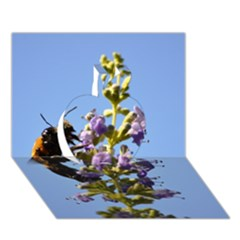 Bumble Bee 1 Apple 3D Greeting Card (7x5)