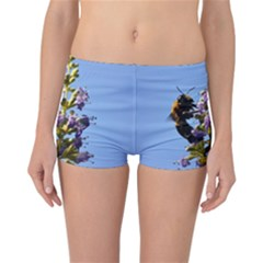 Bumble Bee 1 Reversible Boyleg Bikini Bottoms