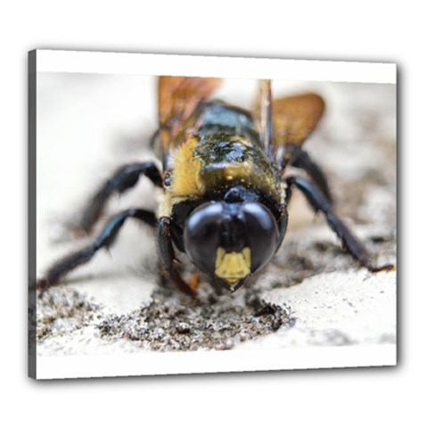 Bumble Bee 2 Canvas 24  X 20