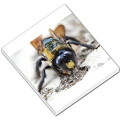 Bumble Bee 2 Small Memo Pads