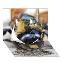 Bumble Bee 2 Heart 3d Greeting Card (7x5)