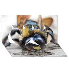 Bumble Bee 2 Twin Hearts 3d Greeting Card (8x4)