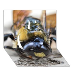 Bumble Bee 2 Apple 3D Greeting Card (7x5)