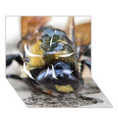 Bumble Bee 2 Clover 3d Greeting Card (7x5)