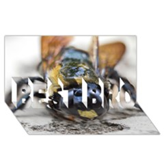Bumble Bee 2 BEST BRO 3D Greeting Card (8x4)