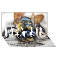 Bumble Bee 2 Best Sis 3d Greeting Card (8x4)
