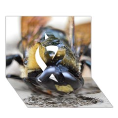 Bumble Bee 2 Ribbon 3D Greeting Card (7x5)