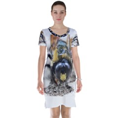 Bumble Bee 2 Short Sleeve Nightdresses