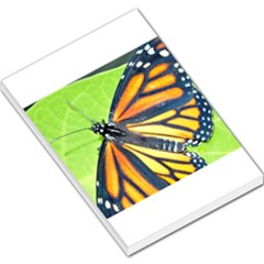 Butterfly 2 Large Memo Pads