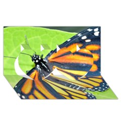 Butterfly 2 Twin Hearts 3d Greeting Card (8x4)