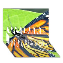 Butterfly 2 You Are Invited 3d Greeting Card (7x5)