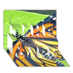 Butterfly 2 TAKE CARE 3D Greeting Card (7x5)