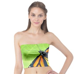 Butterfly 2 Women s Tube Tops