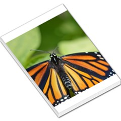 Butterfly 3 Large Memo Pads