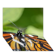 Butterfly 3 Love Bottom 3d Greeting Card (7x5)