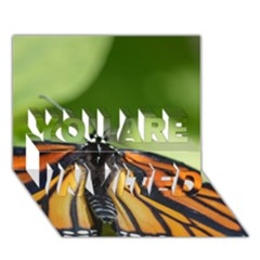 Butterfly 3 YOU ARE INVITED 3D Greeting Card (7x5)