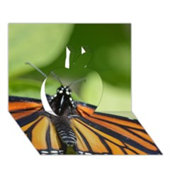 Butterfly 3 Apple 3D Greeting Card (7x5)