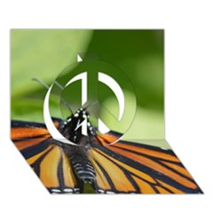 Butterfly 3 Peace Sign 3d Greeting Card (7x5)