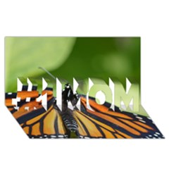 Butterfly 3 #1 MOM 3D Greeting Cards (8x4)