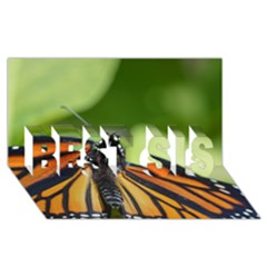 Butterfly 3 Best Sis 3d Greeting Card (8x4)