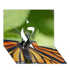 Butterfly 3 Ribbon 3d Greeting Card (7x5)