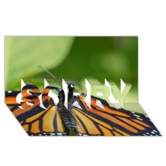Butterfly 3 SORRY 3D Greeting Card (8x4)