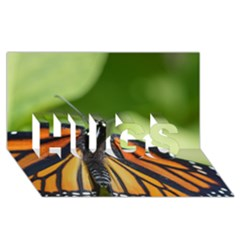 Butterfly 3 Hugs 3d Greeting Card (8x4)