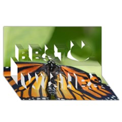 Butterfly 3 Best Wish 3d Greeting Card (8x4)