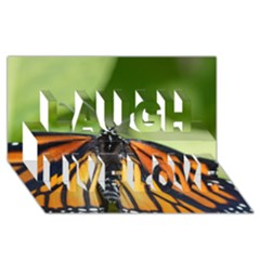 Butterfly 3 Laugh Live Love 3D Greeting Card (8x4)